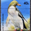 NEW ZEALAND - CIRC1991: stamp printed in New Zealand, shows penguin, circ1991 — Stock Photo #9444592