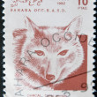 SAHARA - CIRCA 1992: A stamp printed in Sahrawi Arab Democratic Republic (SADR) shows Golden jackal, Canis aureus, circa 1992 - Stock Photo