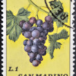 Stock Photo: SAN MARINO - CIRC1973: stamp printed in SMarino shows bunch of grapes, circ1973