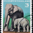 THAILAND - CIRCA 2003: A stamp printed in Thailand shows elephant cow with elephant kid, circa 2003 — Stock Photo #9444794