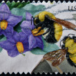 UNITED STATES - CIRCA 2007: stamp printed in USA shows Purple Nightshade and Morrison Bumblebee, circa 2007 — Stock Photo
