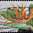 UNITED STATES OF AMERICA - CIRCA 1999: A stamp printed in USA  shows image of a Bird of Paradise plant, circa 1999 - ストック写真