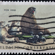 UNITED STATES - CIRCA 1972: stamp printed in USA shows fur seal, wildlife conservation, circa 1972 — Stock Photo #9445237