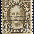 UNITED STATES OF AMERICA - CIRCA 1925: A stamp printed in USA sh — Stock Photo