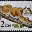 UNITED STATES OF AMERICA - CIRCA 1990: A stamp printed in USA shows bobcat in tree, circa 1990 - Stock Photo