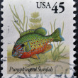 Royalty-Free Stock Photo: UNITED STATES OF AMERICA - CIRCA 2011: A stamp printed in USA shows Pumpkinseed sunfish, circa 2011