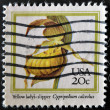UNITED STATES OF AMERICA - CIRCA 1984: A stamp printed in USA shows yellow lady´s-slipper, cypripedium calceolus, circa 1984 — Stock Photo