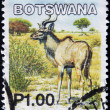 BOTSWANA - CIRCA 2002: A stamp printed in Botswana shows image of a greater kudus, circa 2002 — Stock Photo