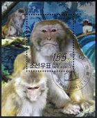 Korea północna - około 2004: stamop drukowane w dpr korea pokazuje makak, około 2004 — Zdjęcie stockowe