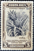 COSTA RICA - CIRCA 1950: A stamp printed in Costa Rica dedicated to agricultural fair, livestock and industrial Carthage, shows a pineapple, circa 1950 — Stock Photo