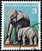 THAILAND - CIRCA 2003: A stamp printed in Thailand shows elephant cow with elephant kid, circa 2003 — Stock Photo