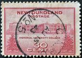 Estados unidos - alrededor de 1943: un sello impreso en estados unidos muestra memorial university college de terranova, alrededor de 1943 — Foto de Stock