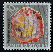 USA - CIRCA 1974: A stamp printed in the USA shows petrified wood, mineral heritage, circa 1974 — Stockfoto