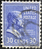UNITED STATES OF AMERICA - CIRCA 1938: a stamp printed in the United States of America shows Theodore Roosevelt, 26th President of USA, circa 1938 — Stock Photo