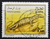 ALGERIA - CIRCA 1993: A stamp printed in Algeria shows varanus griseus, circa 1993 — Stock Photo