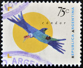 ARGENTINA - CIRCA 1995: A stamp printed in Argentina shows a condor, circa 1995 — Stock Photo