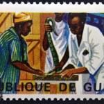 Постер, плакат: GUINEA CIRCA 1967: A stamp printed in Guinea shows Extraction of snake venom circa 1967