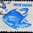 INDIA - CIRCA 1984: A stamp printed in India shows fishes, circa 1984 - Stockfoto