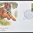 COOK ISLANDS - CIRCA 1992: A stamp printed in Cook Islands shows a tiger, circa 1992 - Stock fotografie
