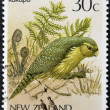 NEW ZEALAND - CIRCA 1986: A stamp printed in New Zealand, shows a bird Kakapo (Strigops habroptilus), circa 1986 — Stock Photo