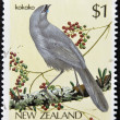 NEW ZEALAND - CIRCA 1985: stamp printed in New Zealand shows bird, Kokako, circa 1993. — Stock Photo
