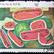 "Stock Photo: PANAM- CIRC1968: stamp printed in Panamshows work ""watermelons"" by Diego Rivera, circ1968"