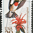 UNITED STATES OF AMERICA - CIRCA 1992: A stamp printed in USA shows ruby throated hummingbird, circa 1992 — Stock Photo