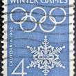 USA - CIRCA 1960: A stamp printed in USA shows image of the dedicated to the 8 Olympic Winter Games, California, circa 1960. — Stockfoto
