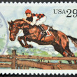 UNITED STATES OF AMERIC- CIRC1993: stamp printed in USshows Steeplechase, circ1993 — Stock Photo #9451626