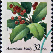 USA-CIRCA 1997:A stamp printed in USA shows image of the Ilex opaca, American Holly, circa 1997. — Stock Photo