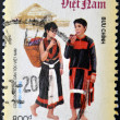 VIETNAM - CIRCA 2005: A stamp printed in Vietnam dedicated to the different ethnic Vietnamese, serie, circa 2005 - Stock Photo