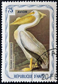 HAITI - CIRCA 1975: A stamp printed in Haiti shows White pelican, circa 1975 — Stock Photo