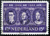 HOLLAND - CIRCA 1964: a stamp printed in the Netherlands shows King Baudouin, Queen Juliana and Grand Duchess Charlotte, Benelux, circa 1964 — Stock Photo