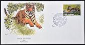 库克群岛-大约 1992年: 一张邮票印在库克群岛显示一只老虎,大约 1992年 — 图库照片