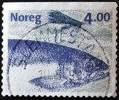 Norwegia - około 1999: znaczek wydrukowany w norwegii pokazuje obraz z łososia, około 1999 — Zdjęcie stockowe