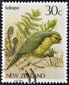 NEW ZEALAND - CIRCA 1986: A stamp printed in New Zealand, shows a bird Kakapo (Strigops habroptilus), circa 1986 — Stock Photo