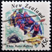 Nowa zelandia - około 2001: znaczek wydrukowany w nowej zelandii pokazuje, białe wody rafting, około 2001 — Zdjęcie stockowe
