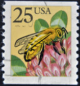 USA - CIRCA 1988: A stamp printed in the USA, shows the Western honey bee (Apis mellifera), circa 1988 — Stock Photo