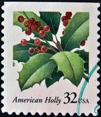 USA-CIRCA 1997:A stamp printed in USA shows image of the Ilex opaca, American Holly, circa 1997. — Stock Photo