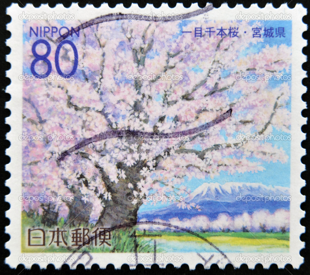 JAPAN - CIRCA 2000: A stamp printed in Japan, prefecture Miyagi, portrayed Cherry Blossoms, circa 2000  Stock Photo #9450441