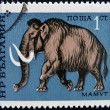 Stock Photo: BULGARI- CIRC1971: stamp printed by BULGARIshows mammoth, circ1971