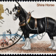 UNITED KINGDOM - CIRCA 1978: A stamp printed in Great Britain shows image of shire horse, circa 1978 — Stock Photo