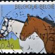 BELGIUM - CIRCA 2006: A stamp printed in Belgium shows two horses, circa 2006 — Stock Photo
