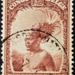 BELGIAN CONGO - CIRC1942: stamp printed in BelgiCongo shows Head of native men, circ1942 — Stock Photo #9854343