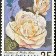 ISLE OF MAN - CIRCA 1998: A stamp printed in Isle of Man shows princess of wales rose, circa 1998 — Foto Stock