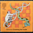 UNITED KINGDOM - CIRCA 2003: A stamp printed in Great Britain refers to the genome, cracking the code, circa 2003 — Stock Photo