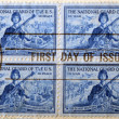 UNITED STATES OF AMERICA - CIRCA 1955 : stamp printed in USA shows The National Guard of The US, circa 1955 — Stock Photo