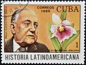 CUBA - CIRCA 1989: A stamp printed in CUBA dedicated to Latin American history, shows a Cochleanthes discolor and Alejo Carpentier, circa 1989 — Stockfoto