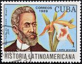 CUBA - CIRCA 1989: A stamp printed in CUBA dedicated to Latin American history shows a Laelia grandis and Machado de Assis, circa 1989 — Stock Photo