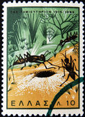 GREECE - CIRCA 1965: A stamp printed in Greece shows ants entering the nest, circa 1965 — Stock Photo
